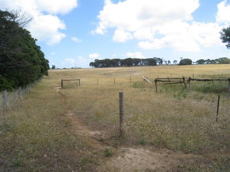 Lot 11 Carba Road, Wye, SA 5291