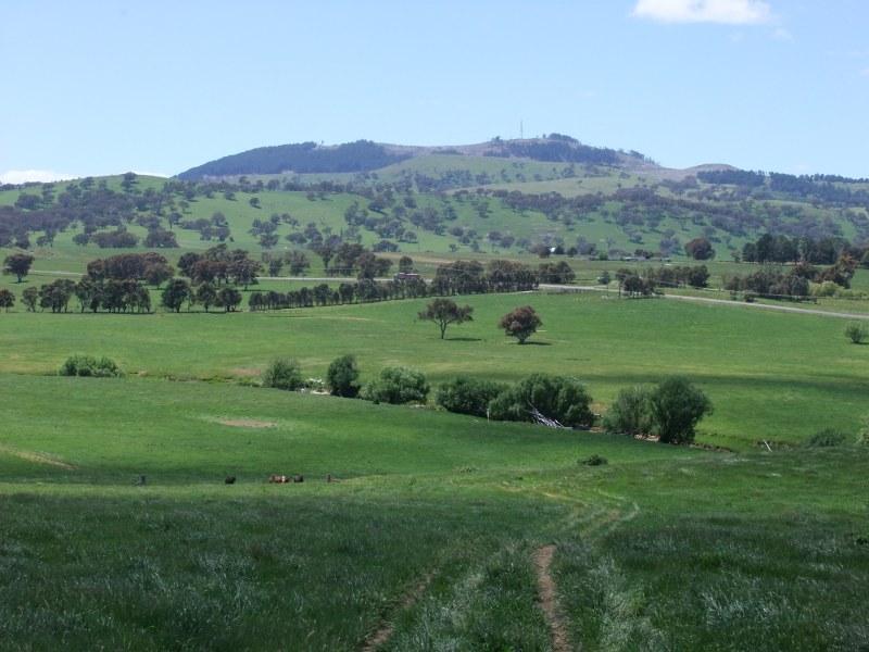 58 Errowanbang Road, Blayney, NSW 2799
