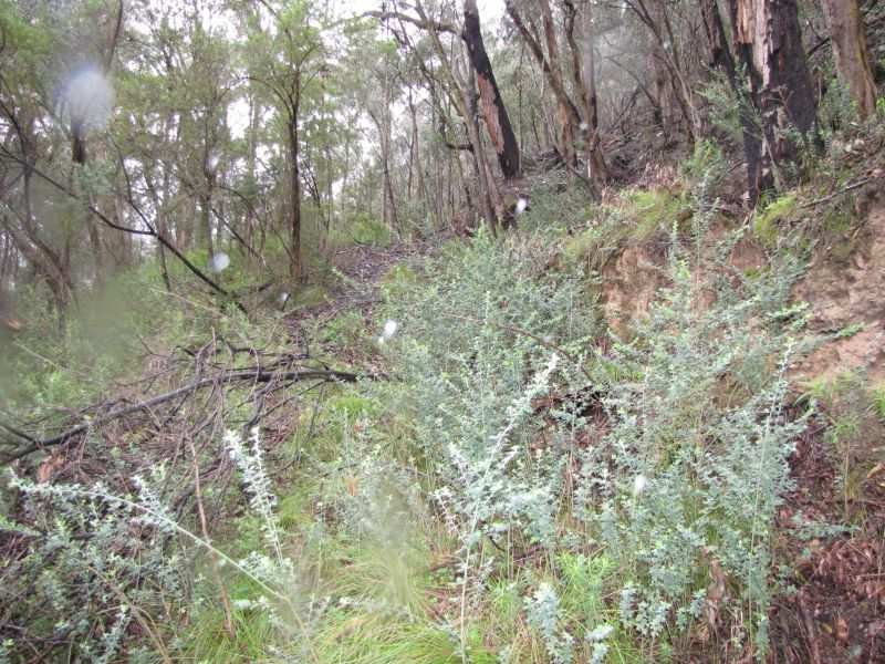 Lot 3 Happy Go Lucky Road, Walhalla, Vic 3825