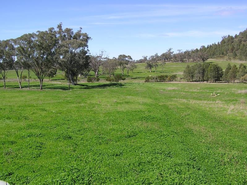 Nombi Road, Mullaley, NSW 2379