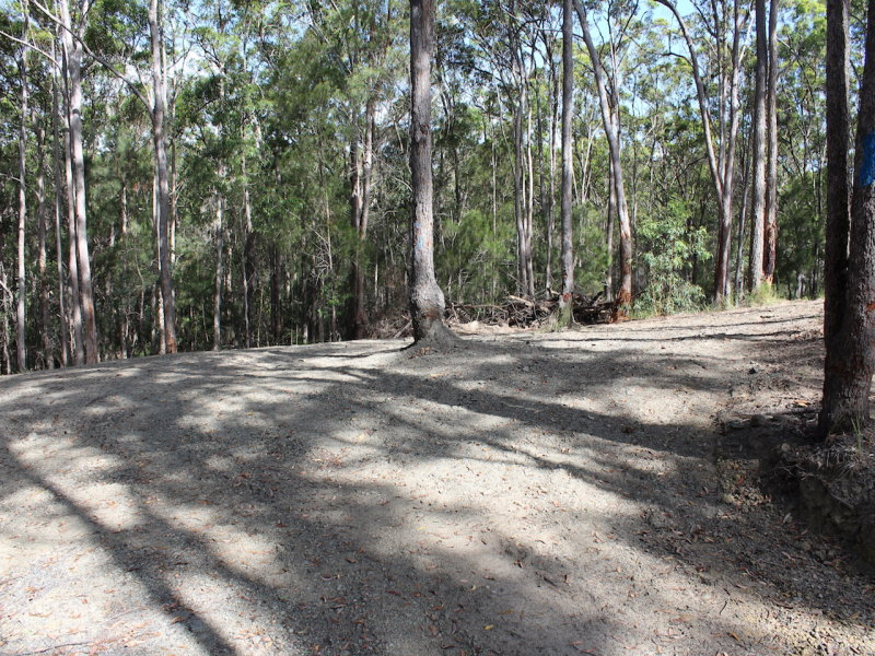 30 Hinterland Drive, Little Mountain, Qld 4551