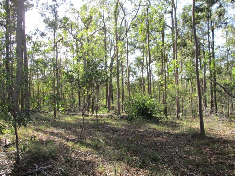 Lot 385 Arborsixteen Road, Glenwood, Qld 4570