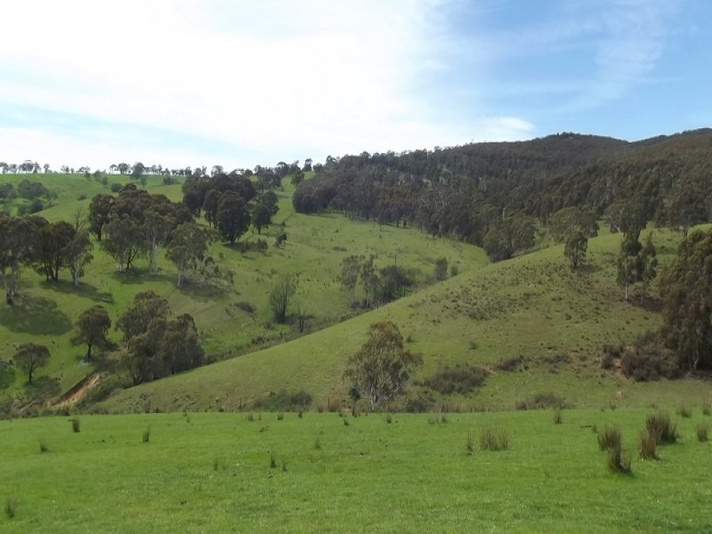 (Lot 1)  212 Kangaroo Track, Omeo, Vic 3898