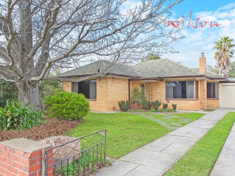 8 Harris Street, Netley, SA 5037