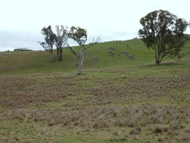 Lot 170 Reynolds Lane, Binalong, NSW 2584