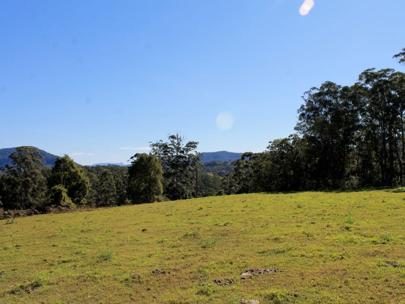 Lot 1 Davis Road, Green Pigeon, Kyogle, NSW 2474