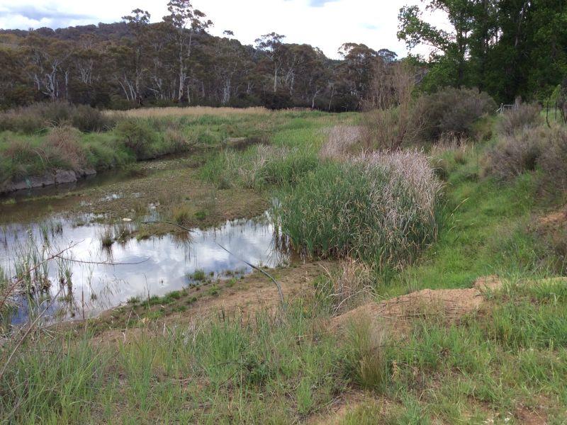 LOT 10, Tranquility Lane, Dalgety, NSW 2628