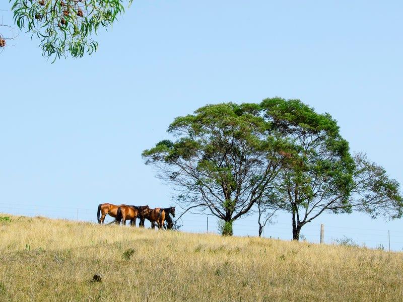 320 CROOME ROAD, Croom, NSW 2527