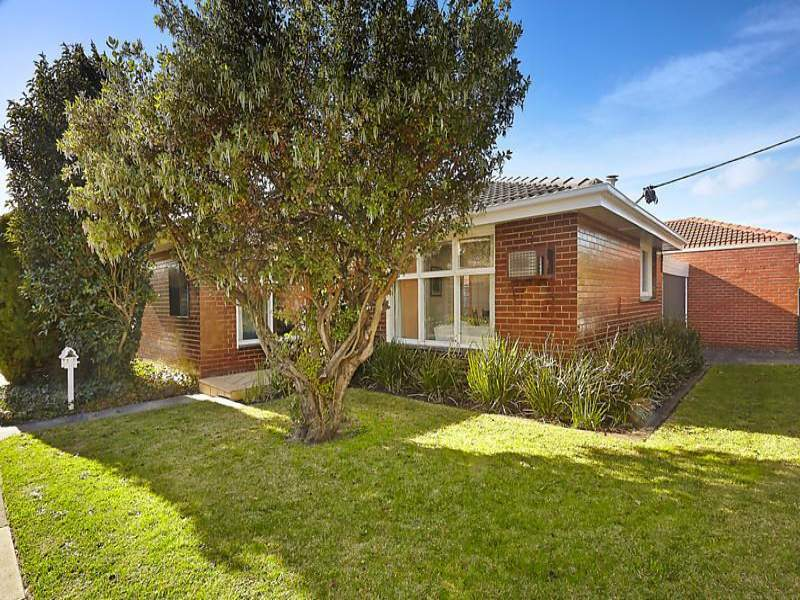 1 41 centre dandenong road cheltenham vic 3192 for 9 kitchen road dandenong