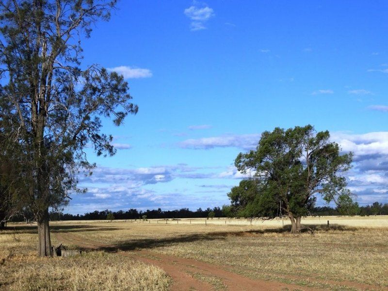 Lot 66 Condamine Highway, Condamine, Qld 4416