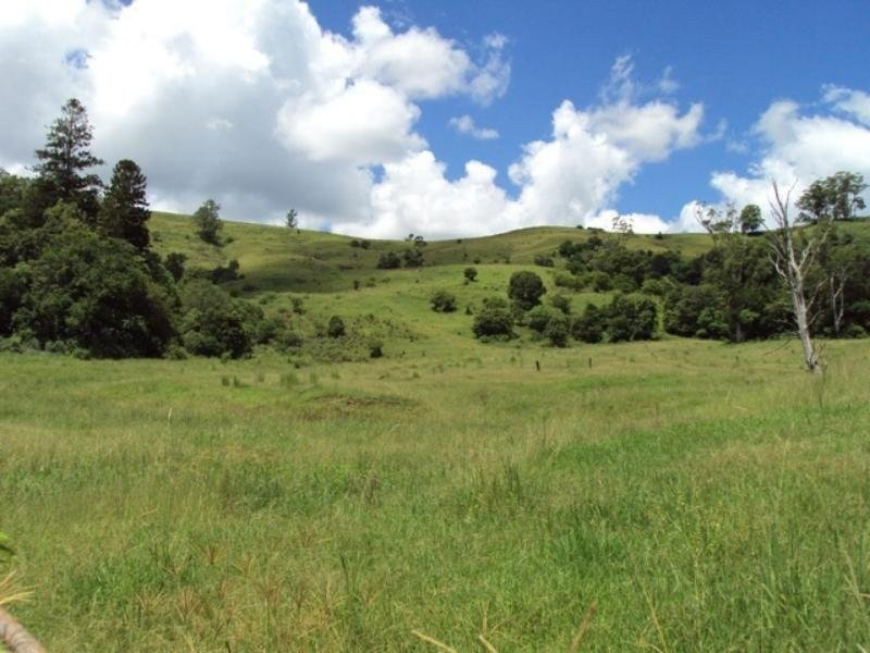 148 Bishops Creek Road, Coffee Camp, NSW 2480