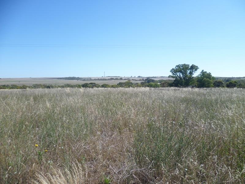 Lot 305 Mallee Highway Peake,, Tailem Bend, SA 5259