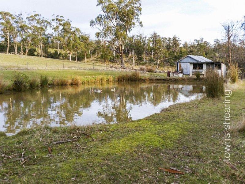 1218 Windermere Road, Swan Bay, Tas 7252