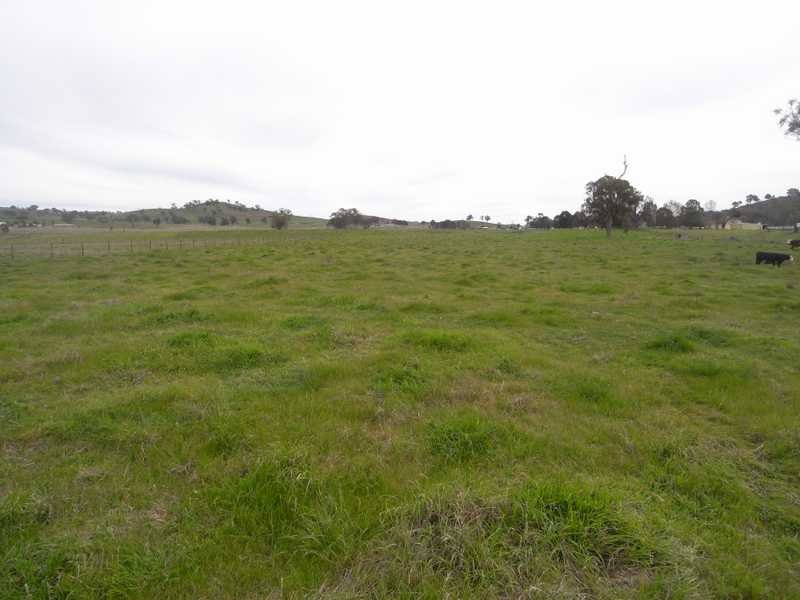 Lot,3 Tip Top Adelong Road, Tumblong, NSW 2729