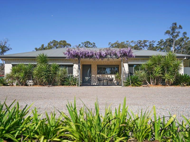64 Sassin Crescent, Medowie, NSW 2318