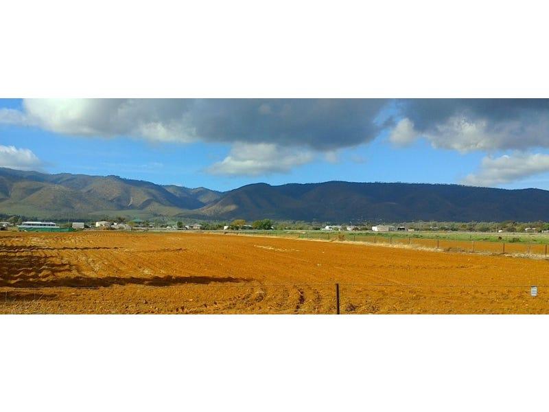 Lot 103 Acropolis Road, Nelshaby, SA 5540