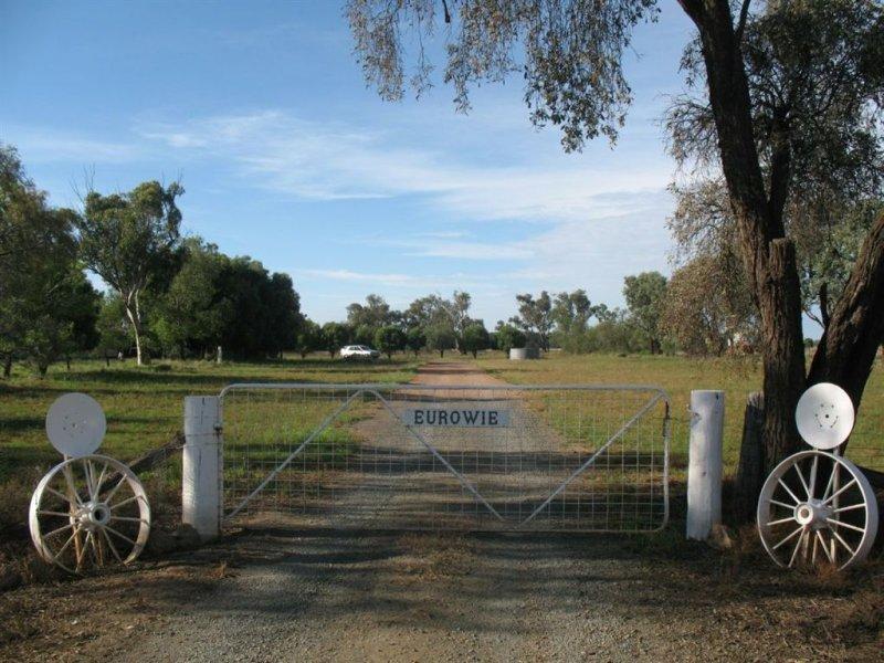 . Eurowie Aggregation, West Wyalong, NSW 2671