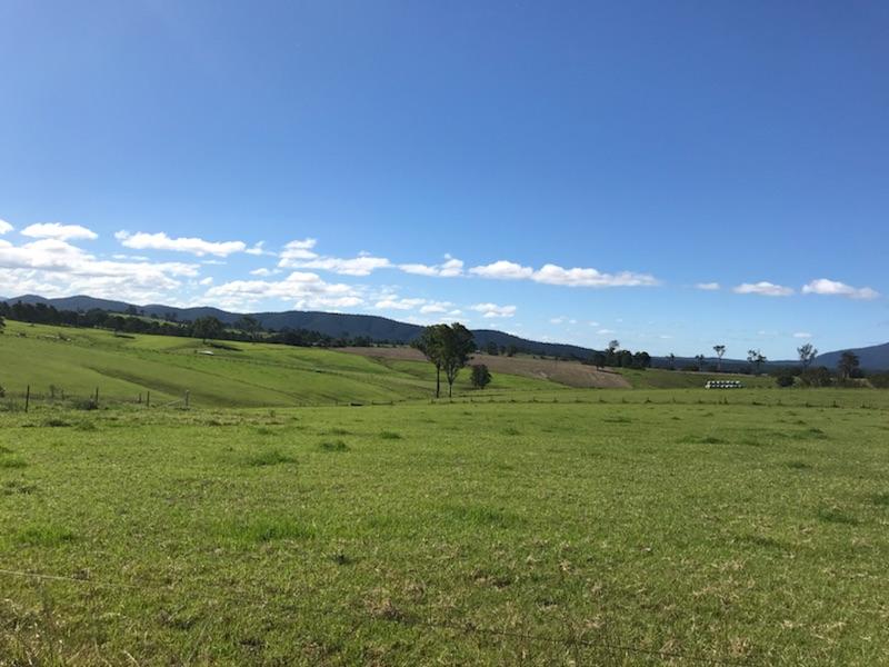Lot 2163 Coolagolite Link Road, Coolagolite, NSW 2550