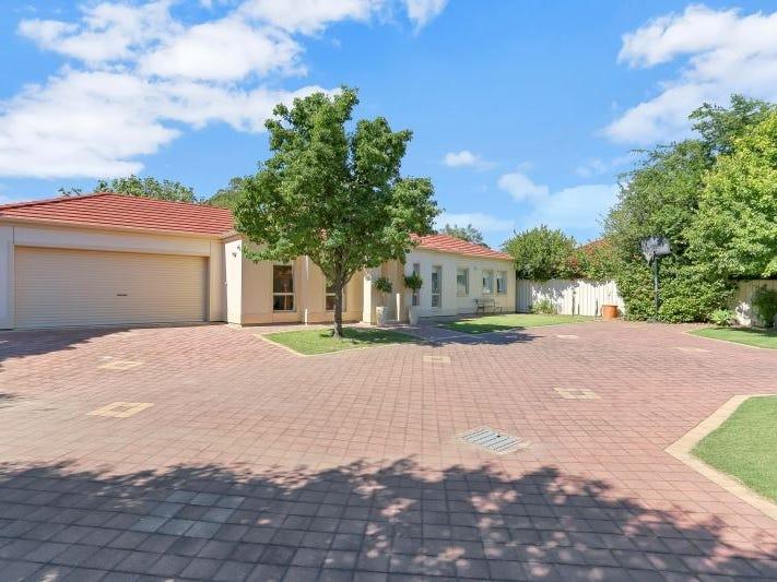 17A Ian Street, Broadview, SA 5083