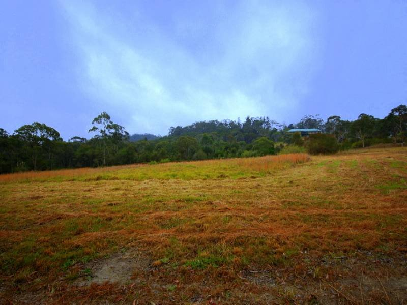 45 Baines, Mangrove Mountain, NSW 2250