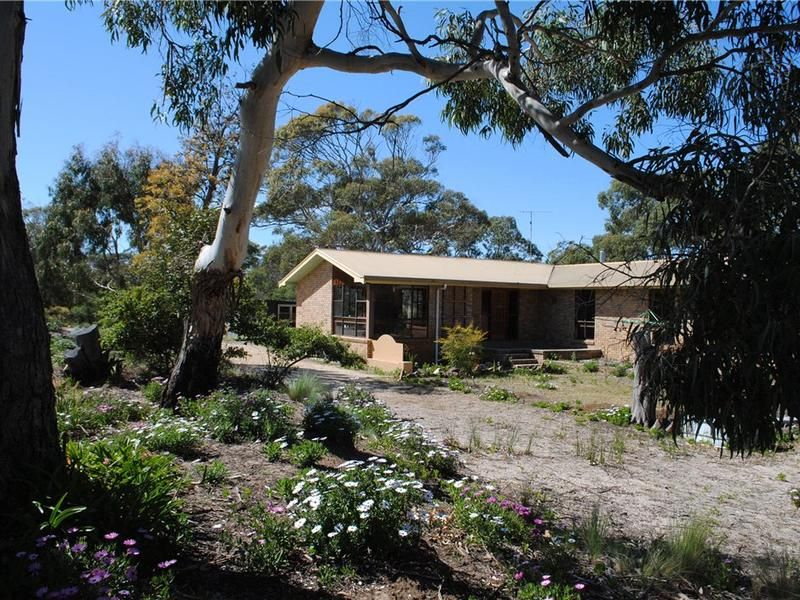 1298 Dolphin Sands Road, Dolphin Sands, Tas 7190