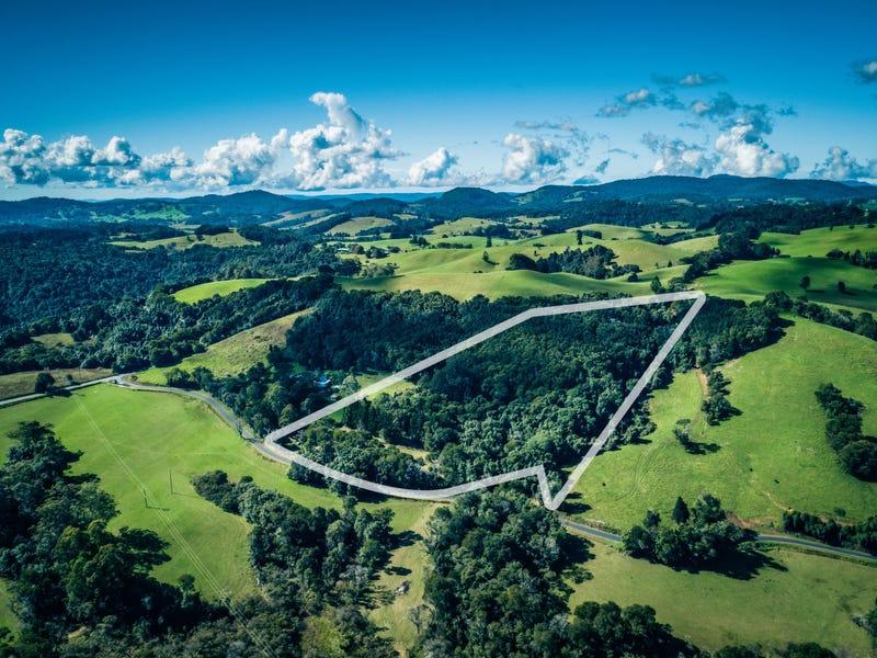 25 Mackays Creek Road, Dorrigo, NSW 2453