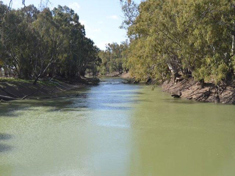 * Darragh, Balranald, NSW 2715