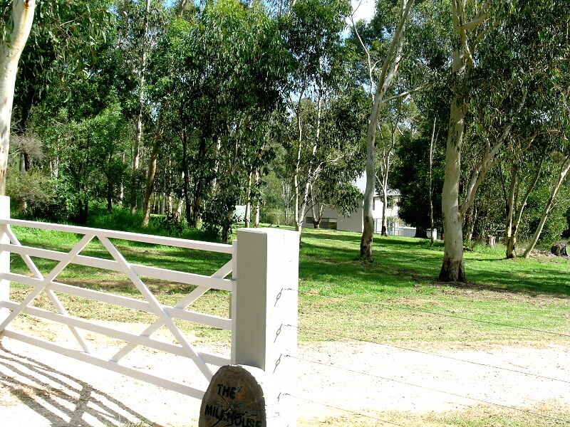 Lot 11 Megalong Road, Megalong Valley, NSW 2785