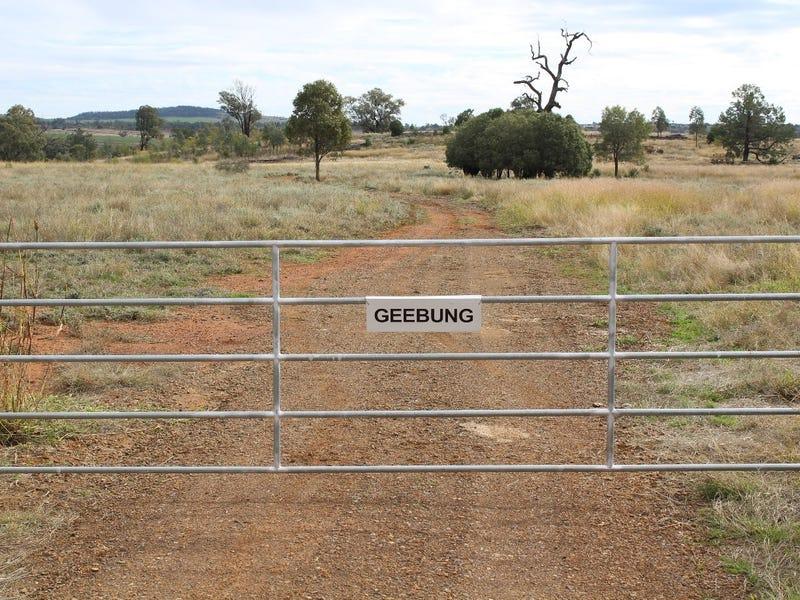 """""""Geebung"""" Gwydir Highway, Gravesend, NSW 2401"""