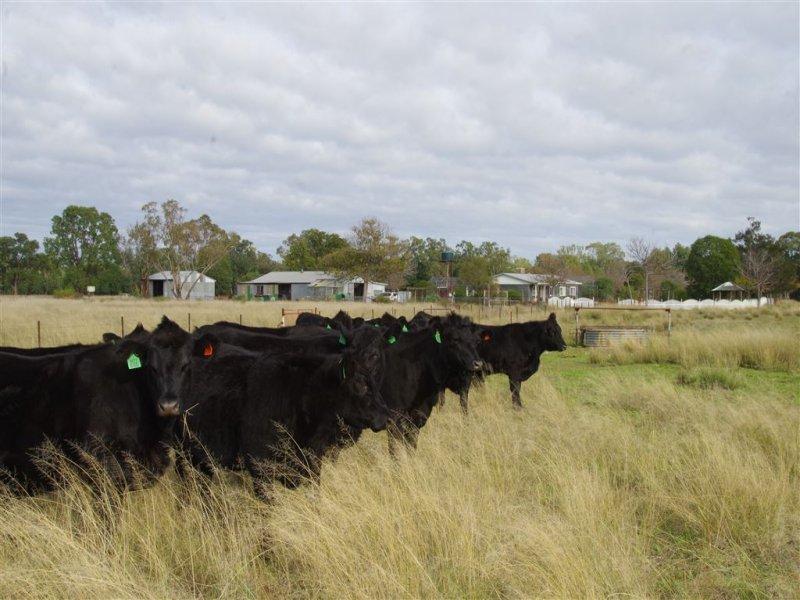 1527 Yarrie Lake Road, Narrabri, NSW 2390