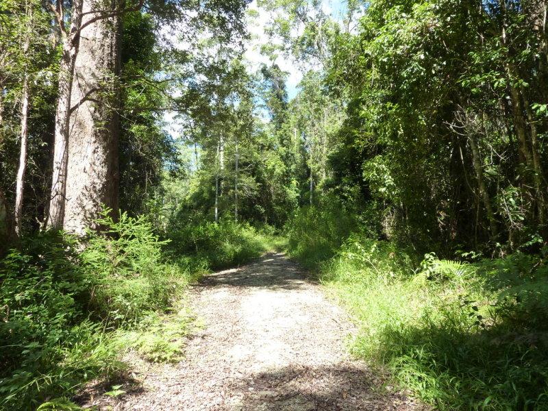 82C Kings Ridge Forest Road, Coramba, NSW 2450