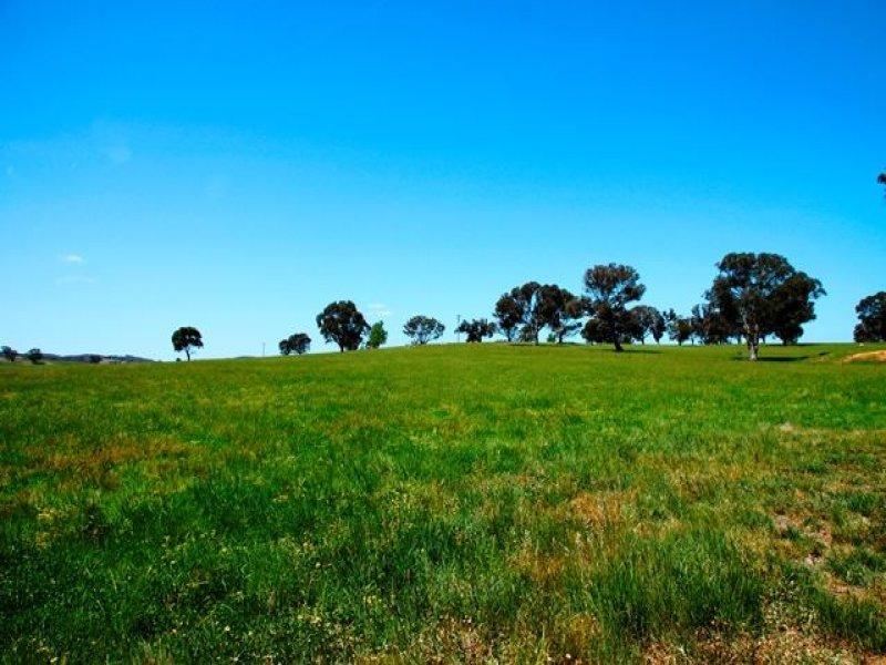 132 'Manton View' Old Gap Road, Yass, NSW 2582