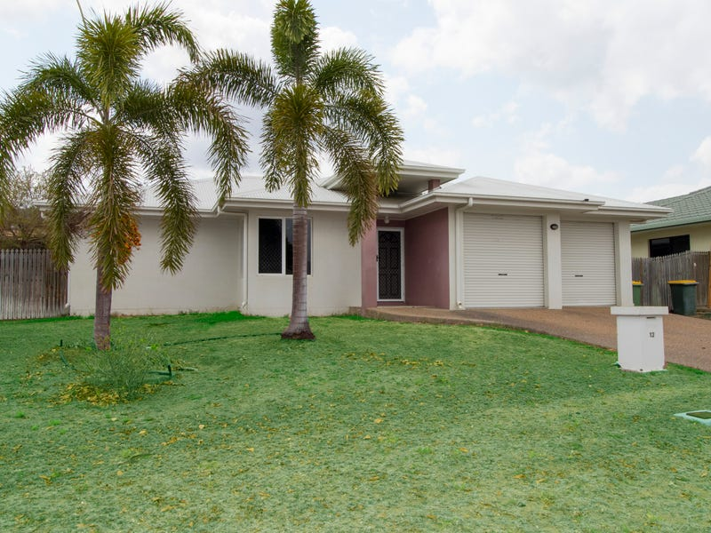 12 Birdwing Court, Douglas, Qld 4814
