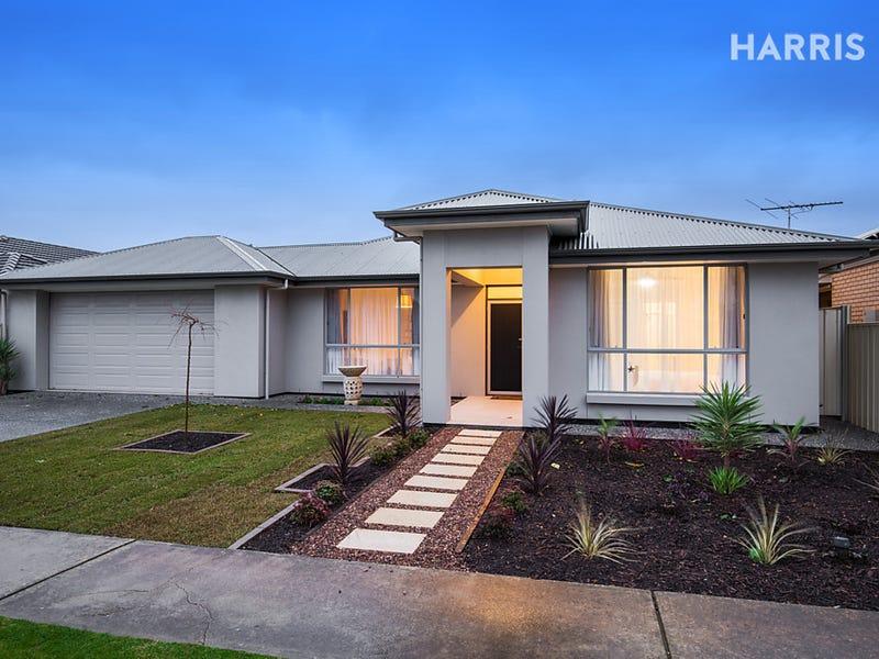 10 Collingwood Avenue, Flinders Park, SA 5025
