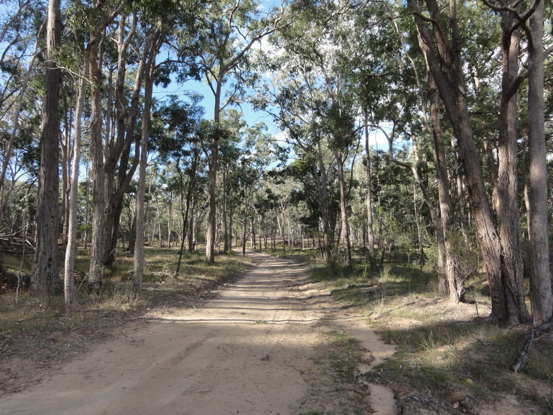 Lot 5 Putty Valley Road, Putty, NSW 2330