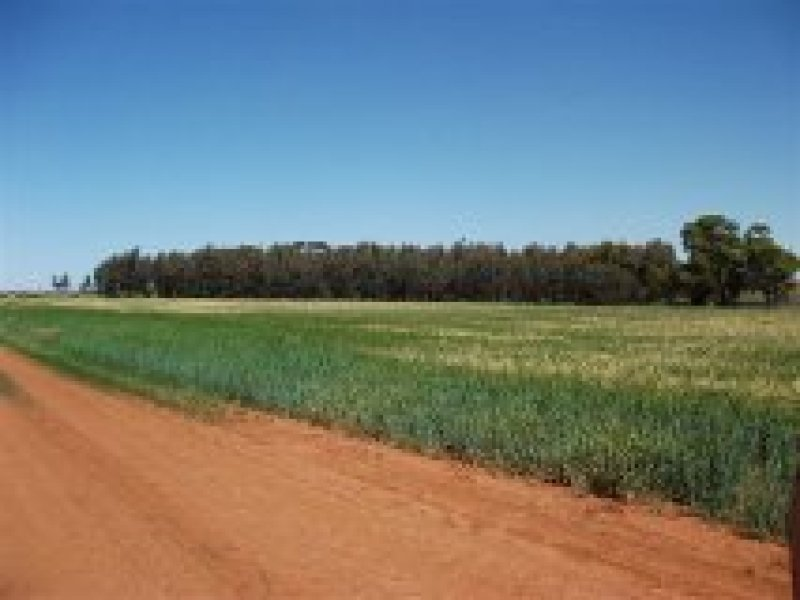 Farm 581 Desailly Road, Coleambally, NSW 2707
