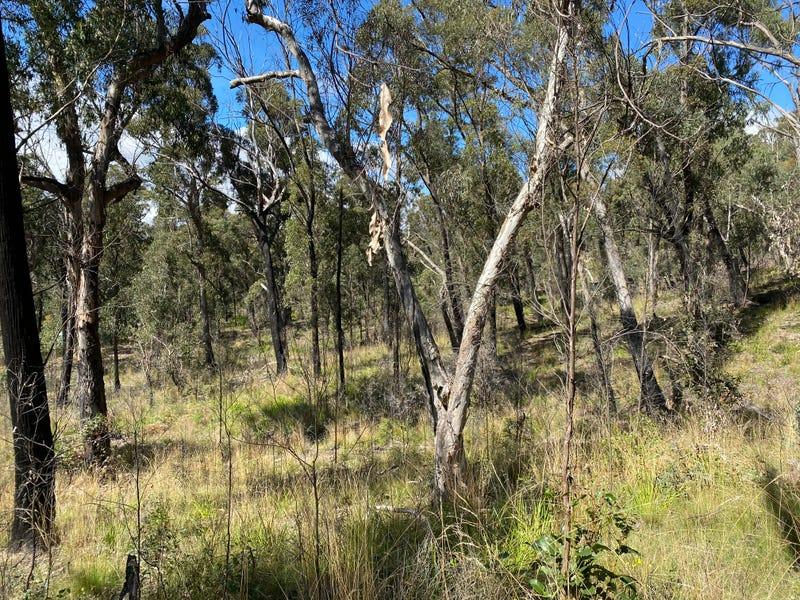 49 Salisbury Avenue, Mount Victoria, NSW 2786