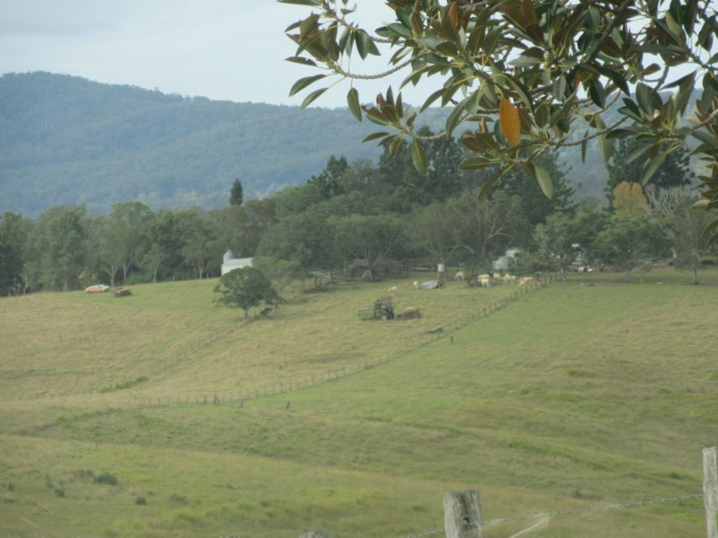 12881 Clarence Way, Tunglebung, NSW 2469