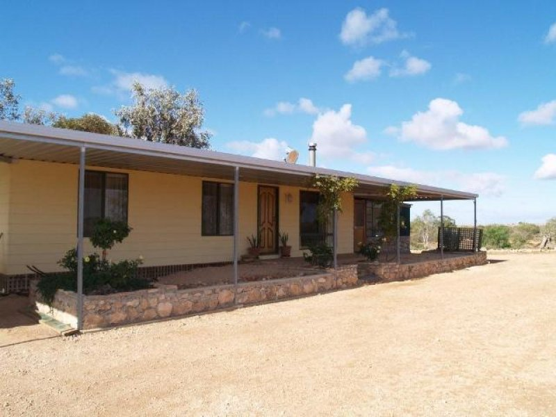 Lot 337 Blanchetown Road, Morgan, SA 5320
