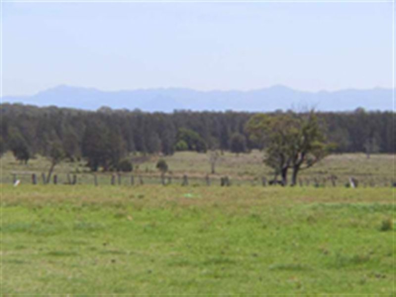 Lot 3 Onslow Lane, Cundletown, NSW 2430
