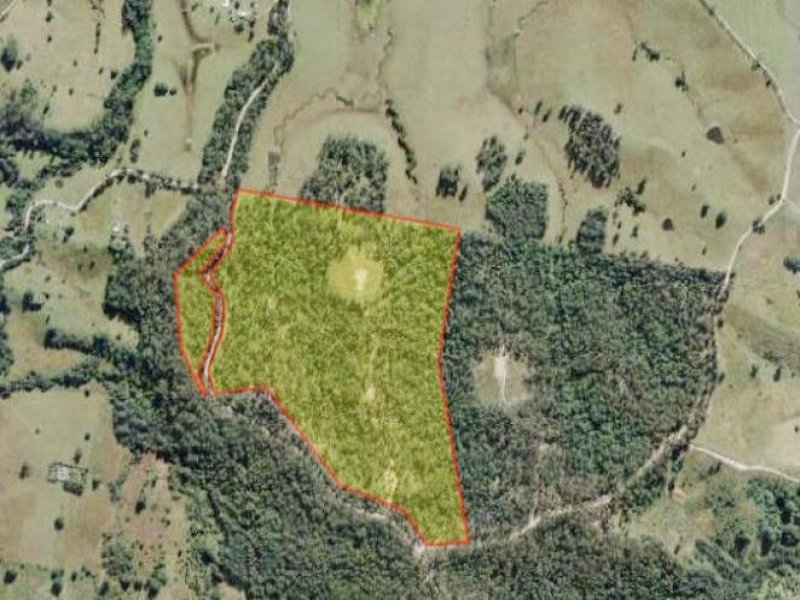 Lot 1 South Bank  Road, Tamban, NSW 2441