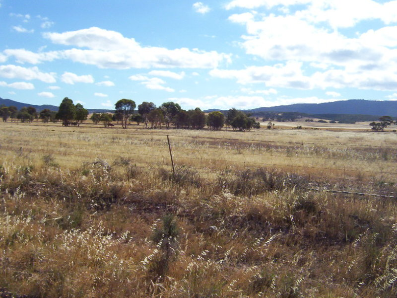 Lot 80 &83, RICHMANS VALLEY ROAD, Quorn, SA 5433