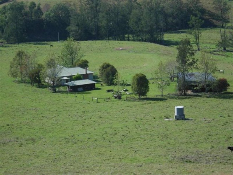 Fifes Creek Road, Bellbrook, NSW 2440