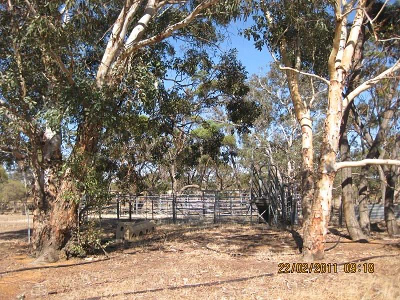 6145 Bindoon-Moora Road, Moora, WA 6510