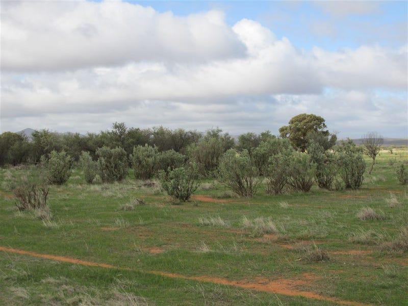 688 Minburra Road, Orroroo, SA 5431
