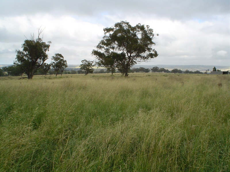 Address available on request, Merriwa, NSW 2329