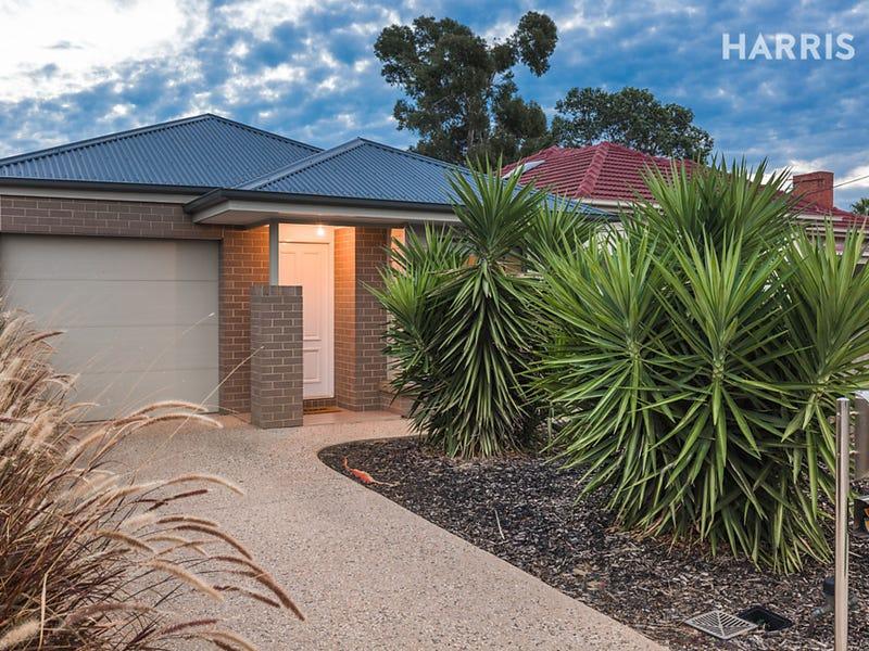 20 Douglas Street, Flinders Park, SA 5025