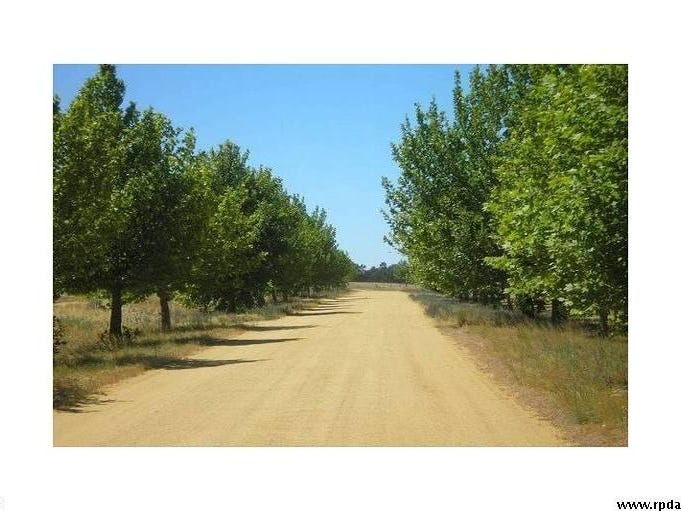 Lot 20/ Conargo Road, Deniliquin, NSW 2710