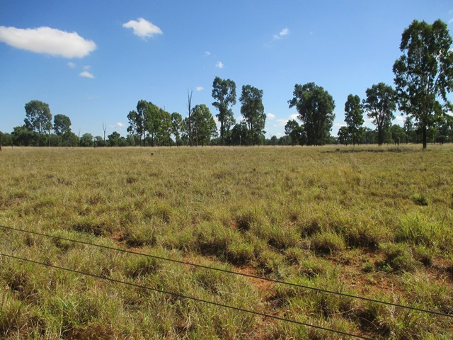 Lot 58 Homebush Lane, Mitchell, Qld 4465