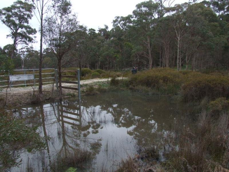 146 Via Nine Mile Road, Glen Innes, NSW 2370